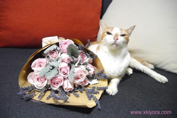 floral-garage-sg-kira