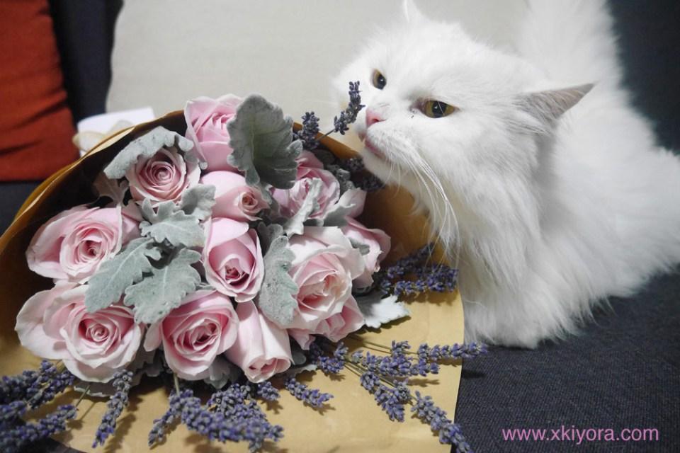 floral-garage-sg-kylila